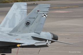 F-18 portando un misil Iris-T (Foto: Fco Javier Chao)