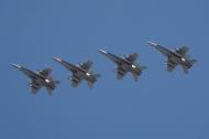 Formación F-18 Ala 15 (Foto: Fco Javier Chao)